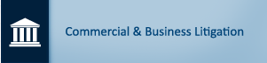 Commercial & Business Litigation